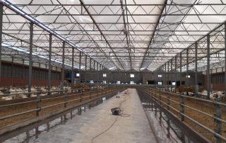 voergang en coating voor de veehouderij